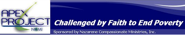 APEX Organizational Assessment logo